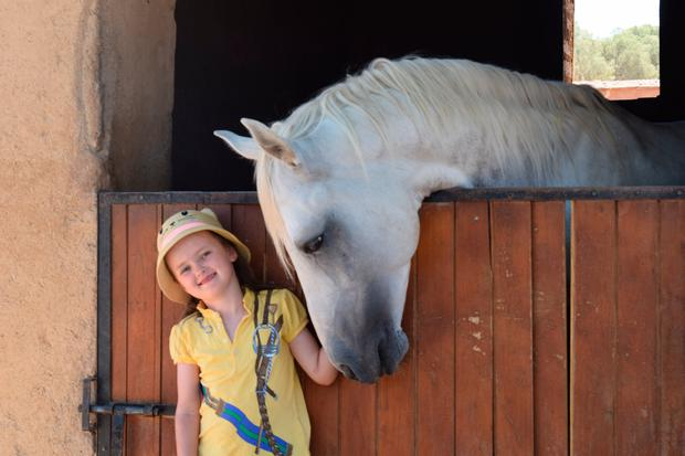 With the horses at Terres d'Amanar. Photo: Suzanne Campbell