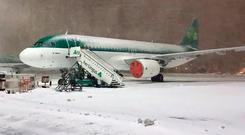 A snowy Aer Lingus plane at Dublin Airport this week. Photo: Twitter/DublinAirport