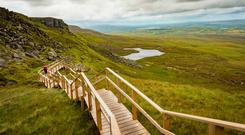 The 'Stairway to Heaven' on Cuilcagh Mountain's Legnabrocky trail. Photo: Deposit