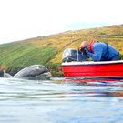 Fungie and Nuala's friend Paul in DIngle Harbour. Photo: Nuala Moore