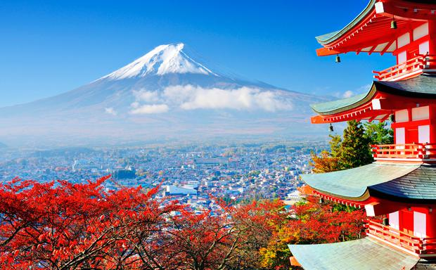 japan rugby world cup 2019 the ultimate travel guide for irish