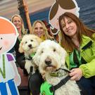 Deidre O'Donovan, Cork Airport; Karen Duke and Cliona O'Rourke from My Canine Companion with autism assist dogs Beth and Jazz as Cork Airport introduced the sunflower lanyard initiative supporting passengers with hidden disabilities. Photo: John Allen