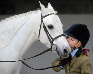 Toberton Lodge Riding School, Co Kildare. Picture: Brian Lawless / SPORTSFILE