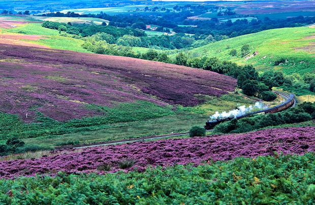Up Hill and Down Dale: Yorkshire offers magnificent scenery as well as lots to do