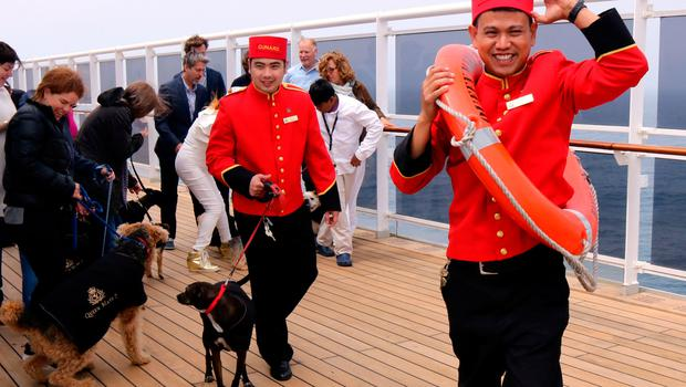 The kennels on board the Queen Mary 2. Photo: PA Photo/Karen Bowerman.