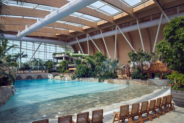 Inside the Subtropical Swimming Paradise at Longford Forest
