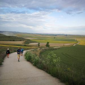 On the Camino in Spain. 'Met some amazing people and the scenery is tranquil and delicious,' says John McNamara. Twitter / @jmcnamaracoach