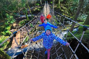 Pupils from Filemore National School, Co Kerry, Emma O'Connor (7), Donagh Sugrue (11) and Meadh O'Sullivan (9), Enda Sheehan (9) try 'The Skywalk' - Ireland's Longest Rope Bridge, at Kells Bay house and Gardens, on the Skellig Coast, and Wild Atlantic Way, Co.Kerry. Photo:Valerie O'Sullivan