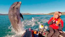 Rudi and Fungie in Dingle Bay. Photo: Jeannine Masset & Rudi Schamhart. See facebook.com/12FungieForever12 for more.