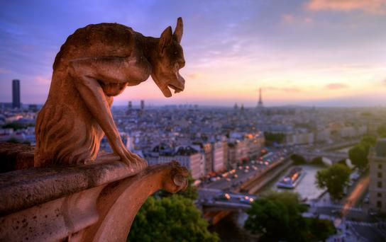 A view from Notre Dame Cathedral, Paris