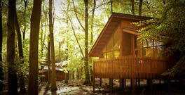 Forest Holidays in the UK at the fabulous Forest of Dean