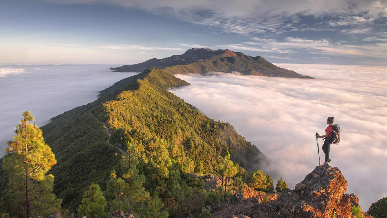 A walk on the wild side of the Canary Islands in La Palma and Tenerife -  Independent.ie
