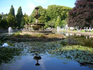 The tranquil oasis of Fitzgerald's Park