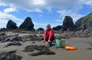 Marie Power, the 'Sea Gardener', foraging on the Copper Coast