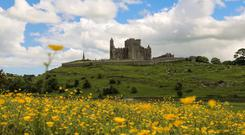 The iconic Rock of Cashel, the history of which dates back to 460AD, overlooks Tipperary's Golden Vale. Photo: Sinead Cahalan/One Little Studio