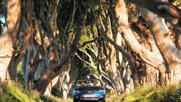 Dark Hedges: The Borough of Antrim has something for everyone