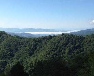 The Appalachian Trail stretches through 14 states and stretches 2,200 miles, allowing visitors to get a real taste of nature