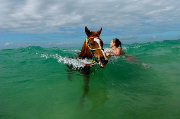 Rainbow Beach Horse Rides allows guests to take their horse for a ride into the ocean in Queensland. See rainbowbeachhorserides.com.au for more.