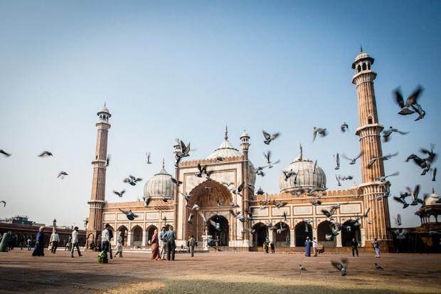 Insight Vacations offer various packages for trips to India.