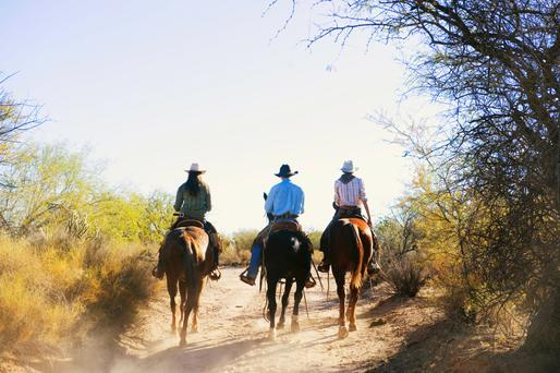 Riders on a dirt path in Arizona.