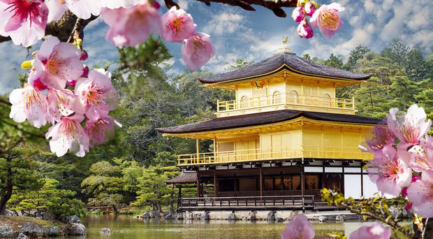 Japan: Kyoto's garlands and pathways