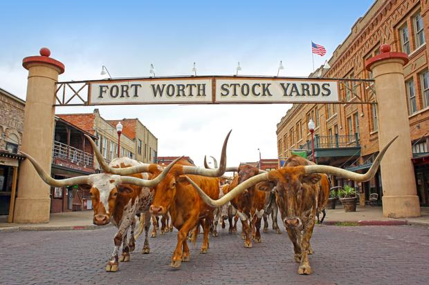 Until the cows come home: Fort Worth Stock Yards