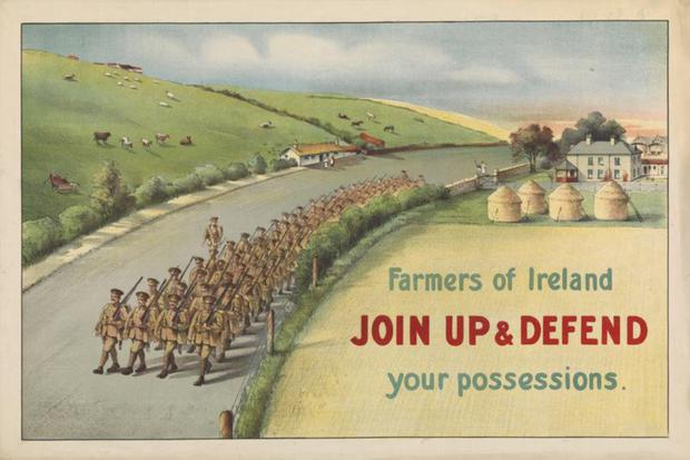 A poster used to persuade Irish farmers to join the war effort