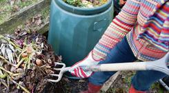 By composting, you'll be surprised at how little waste you are sending out for the bin collection each week.