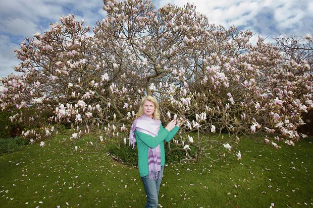 Marie with the Magnolia x soulangeana plant. Photo: Ronan Lang