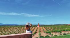 Visting a vineyard in the Spanish countryside is easier than you think.