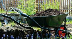 Soil is good for our health