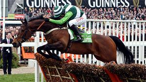 Rock on Ruby ridden by Noel Fehily clears the final hurdle to win the Stan James Champion Hurdle