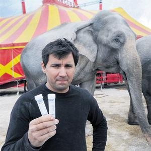 Elephant handler Joy Gartner at Courtney Brothers Circus, Blackpool, Cork, yesterday holding up a urine sample from Indian elephant 'Baby'