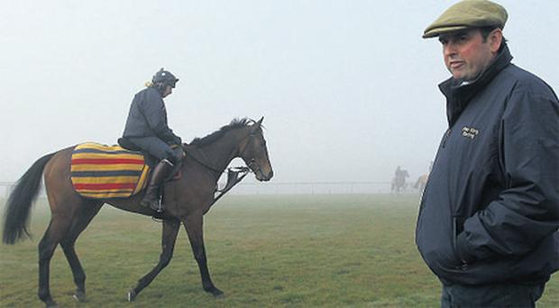 Alan King surveying Triumph Hurdle hope Grumeti on the gallops