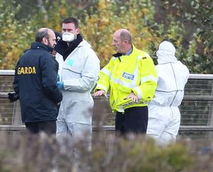 Detectives searching for the body of murdered nanny Aoife Phelan as they conduct a major search at the side of the M7 motorway. Photo: PA