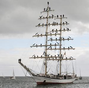 Coastguards say that a group of teenage sailors from Poland are safe after their tall ship was battered by a storm