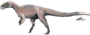 Largest feathered dinosaur find has scientists in a flap.