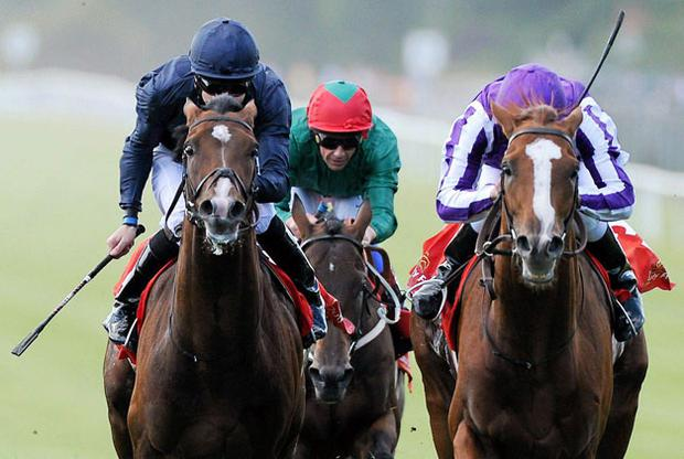 Cape Blanco (right) winning the Irish Derby under Johnny Murtagh from Midas Touch (left) which was ridden by Colm O'Donoghue, who will now have the leg-up on Cape Blanco for Saturday's King George as Murtagh is serving a suspension.