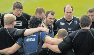 Michael Cheika during his time at Leinster