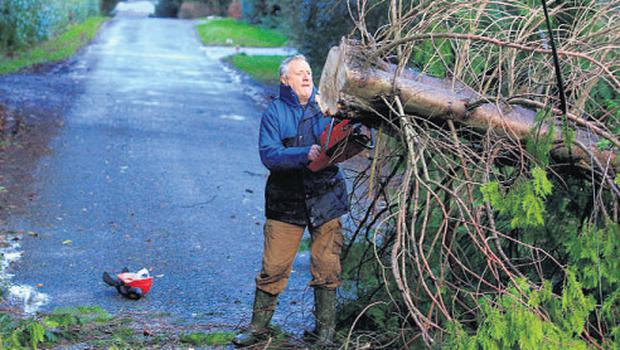 A tree felled in Co Wicklow is removed from the road by 'good samaritan' Tommy Keogh