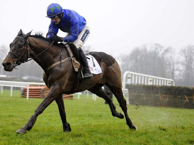 Hurricane Fly: One of three Mullins entries
