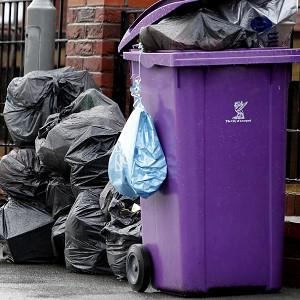 A council has defended spending taxpayers' money on sending a delegation to Spain to inspect a company's bin collection service