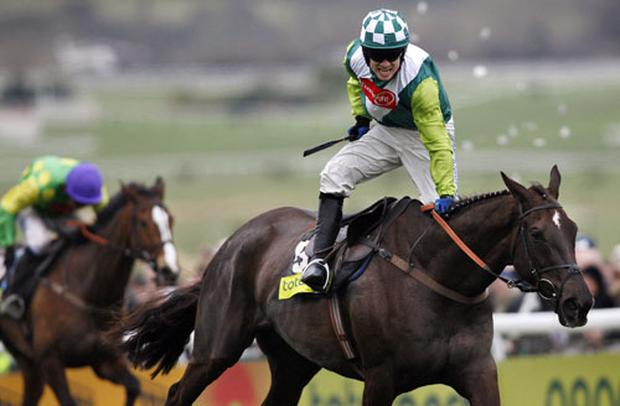 Kauto Star trails Denman across the finish line in the 2008 Cheltenham Gold Cup. Photo: Getty