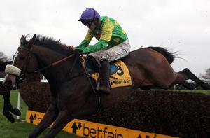 Reigning champion Kauto Star and jockey Ruby Walsh will be favourites to land a third Gold Cup at Cheltenham this March Photo: Getty Images