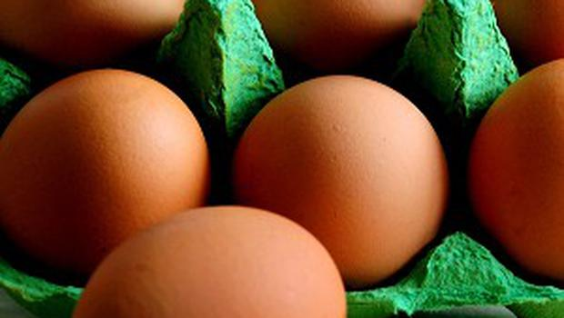 Eggs (Stock photo)