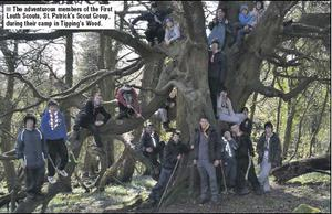 The adventurous members of the First Louth Scouts, St. Patrick's Scout Group, during their camp in Tipping's Wood.