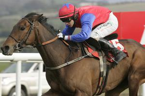 Quevega ridden by Paul Townend. Photo: Getty Images