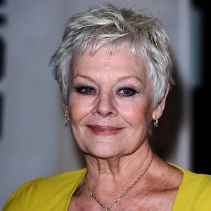 Dame Judi Dench will star in The Best Exotic Marigold Hotel