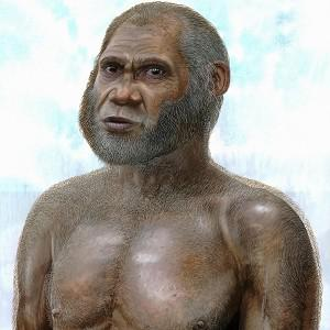 Artist's reconstruction of a mystery extinct human whose fossils were found in two caves in China (Peter Schouten/University of New South Wales/PA)