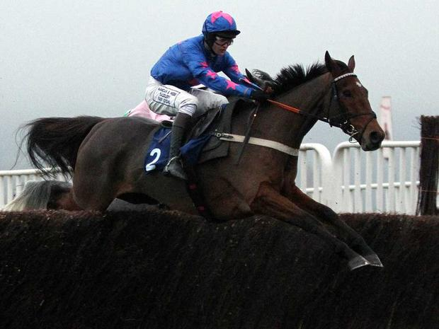 Cue Card: Takes on Sprinter Sacre in the Arkle